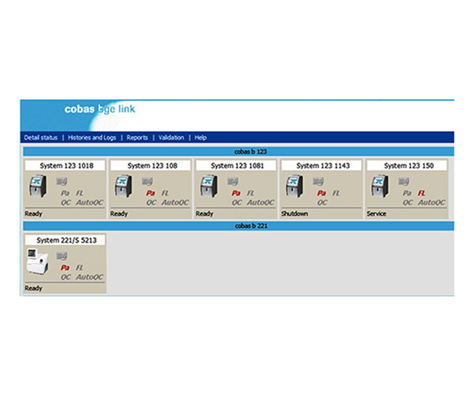 Roche - BGE Link SoftwareIT-SOFTWAREMANAGES COBAS BLOOD GAS INSTRUMENTS AND DATA REMOTELYPDF | More