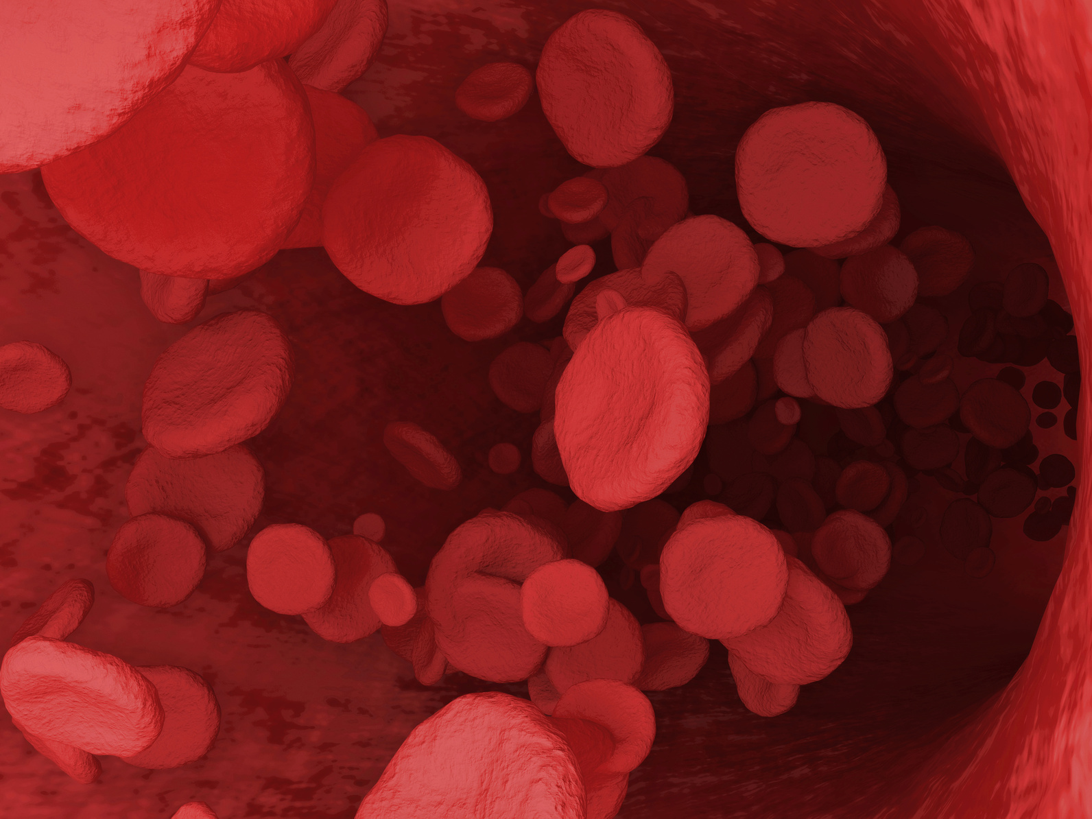 Digital Illustration of a Red Blood Cells Flowing Through Vein